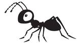 Fototapeta Fototapety na ścianę do pokoju dziecięcego - cartoon ant insect . Side view black and white vector illustration