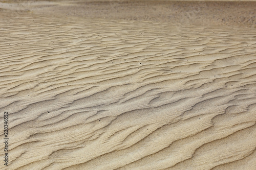 texture desert land sand dunes barkhans, deserts Wallpaper Mural