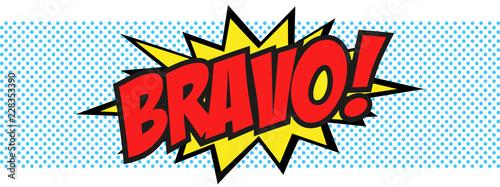 Cuadros en Lienzo Bravo