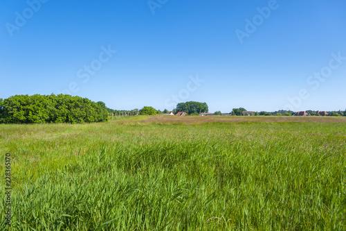 Fotobehang Landschap Landscape near Baabe