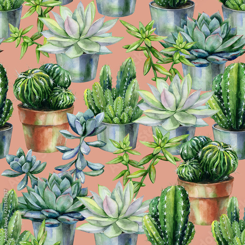 Seamless Watercolor Pattern With Cactus And Succulents In