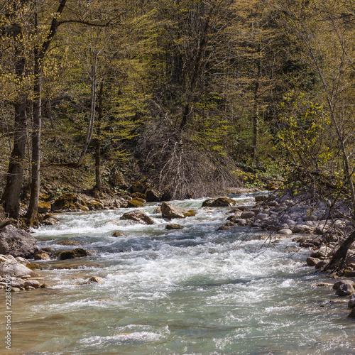 Fotografía  River mountain origin clean ecology water.
