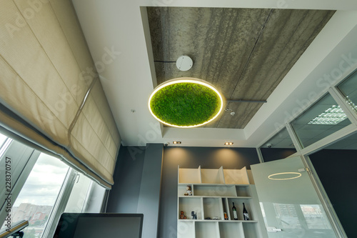 Cuadros en Lienzo Russia, Novosibirsk - August 28, 2018: decorative moss for interior decoration