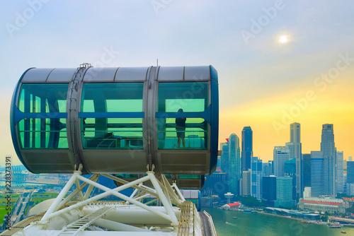 Tuinposter Aziatische Plekken Aerial view Singapore Flyer Downtown