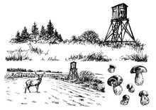 Landscape With Deer Stand. Vector Illustration.