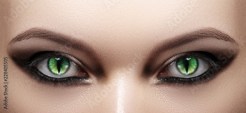 Close-up of Woman Eyes. Halloween Makeup. Cat Eye Lens. Fashion Catwalk Black Make-Up. Luminous Green Cats Eyes