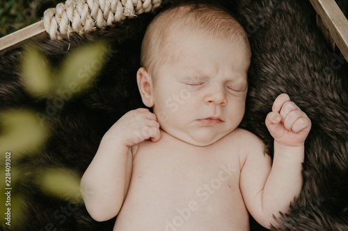 Fotografie, Obraz  Precious and Beautiful Infant Baby Boy Napping on Brown Fur Blanket in Tiny Wood