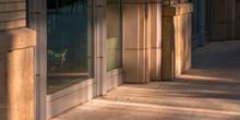 Glass Doors Reflecting Sunligh...
