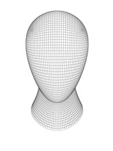 3D Grid Of A Head. 3D Illustration.