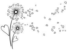 Dandelion Flowers Summer Vector Card. Heart Shaped Feather, Leaves, Flying Petals. Black And Whitee Illustration. Seasonal Blow Ball Pattern For Banner, Print. Love Symbols Design. Meadow Blossom.
