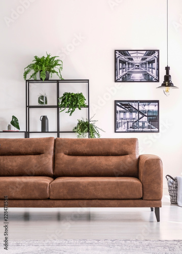 Shelf with green plants behind big comfortable leather sofa ...