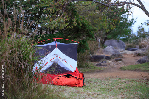 Tent pitched amongst trees in grassy clearing & Tent pitched amongst trees in grassy clearing - Buy this stock photo ...