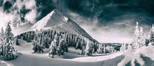 Beautiful Winter Landscape Of The Carpathian Mountains. Petros Peak Covered With Snow.