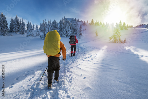 Foto auf Leinwand Wintersport Winter hiking. Tourists are hiking in the snow-covered mountains.