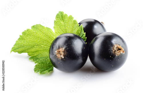 Currant black isolated Wallpaper Mural