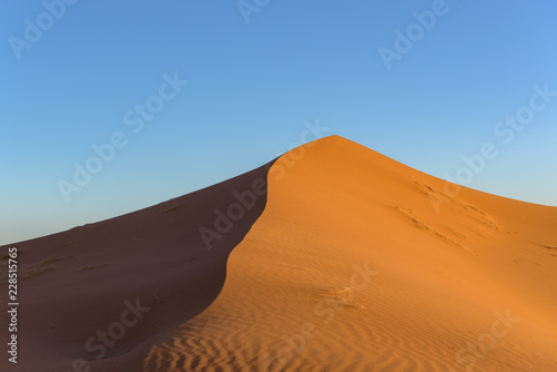 Staande foto Droogte Dunes in the desert of Sahara, Morocco.