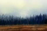 Drzewa w porannej mgle. Malarstwo cyfrowe.. - 228521146