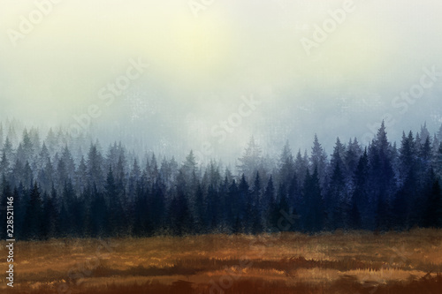 las-w-ciemnych-barwach-mgla