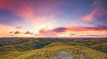 Sunset Sky, Green Grassland. P...