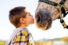 In A Beautiful Autumn Season Of A Young Boy And Horse