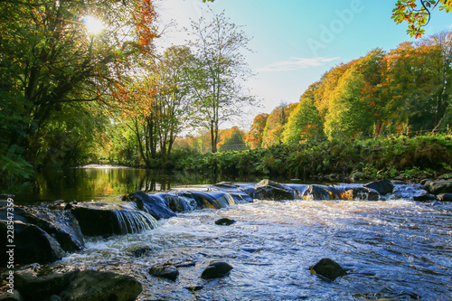 Printed kitchen splashbacks River Glenarm river in autumn