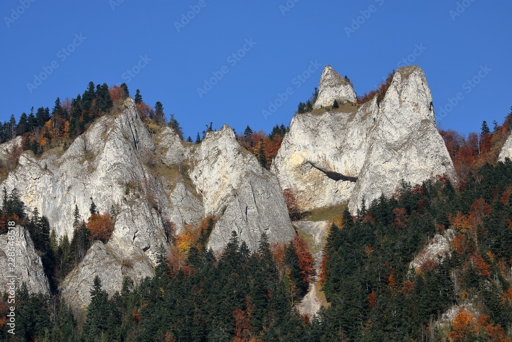 Three Crowns massif in Pieniny mountains, Poland, autumn, skyline, beautiful clear blue sky.