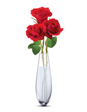 Roses In A Glass Vase, Isolate...