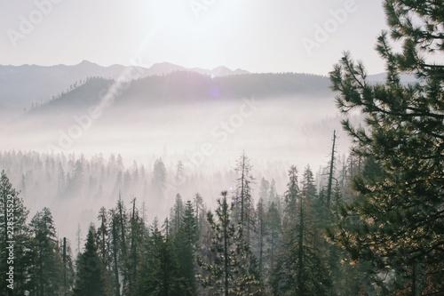 Autocollant pour porte Kaki fog in the mountains