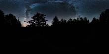 Milky Way Over Pines, Mount De...