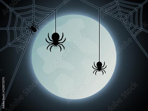 Photo  Halloween Spinne Hintergrund