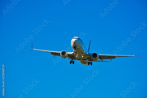 Fototapeta  Boeing 737 MAX - Safety Concerns - Civilian Jet Aircraft Landing - Commercial Tr