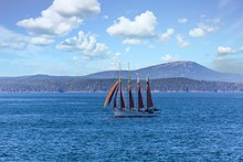 Four Master In Bar Harbor