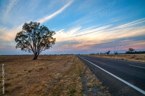Fotografia  Outback Australia and its dry interia landscape full of relics bone fossils and