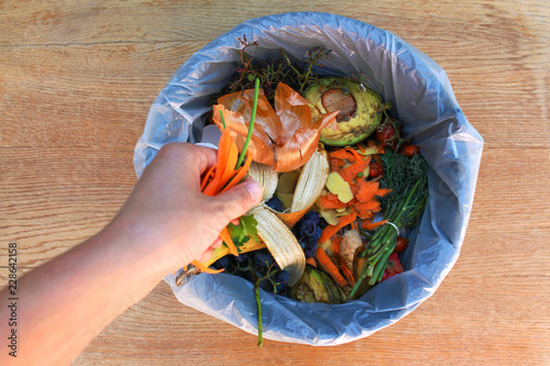 Fotomural Domestic waste for compost from fruits and vegetables