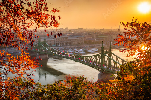 Canvas Prints Budapest Budapest, Hungary - Liberty Bridge (Szabadsag Hid) at sunrise with beautiful autumn foliage