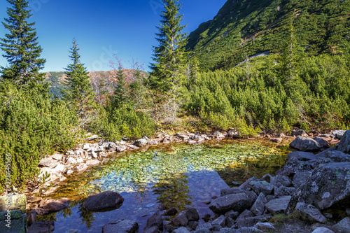 Fototapety, obrazy: Mountain landscape with tarn at autumn, The area of Rohace in Tatras National Park, Slovakia, Europe.