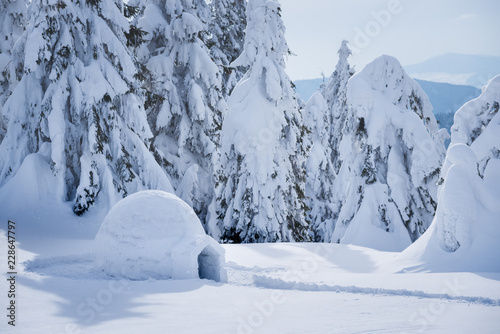 Winter mountain vacations with a snow igloo