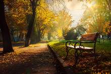 Bench In The Autumn City Park....