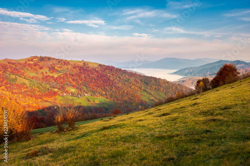 beautiful landscape in mountains. pleasant autumn weather at sunrise. forest in reddish foliage. fog in the distant valley. gorgeous sky above the distant ridge