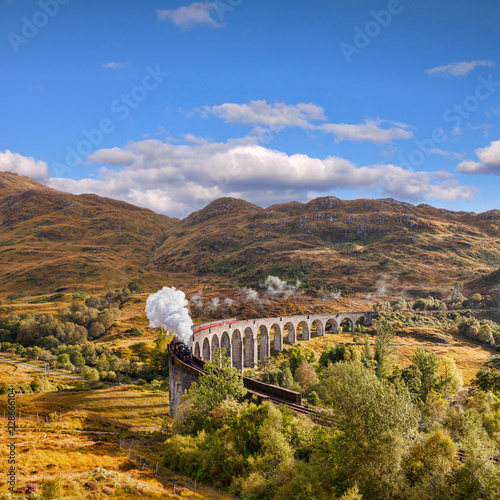 Glenfinnan Viaduct and the Jacobite steam train Wall mural