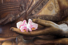 Hand Of Buddha Statue With Orchids