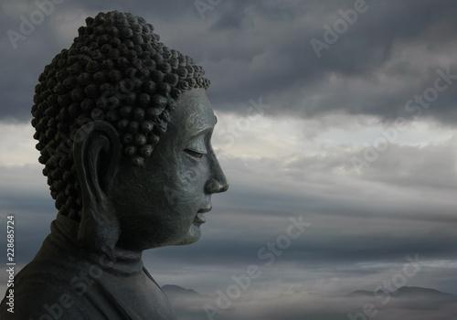 Head of the Buddha