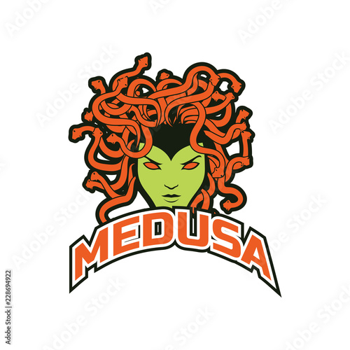 snake hair or medusa logo for your business, vector illustration Wallpaper Mural