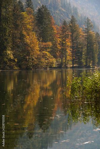Photo Herbststimmung am Almsee