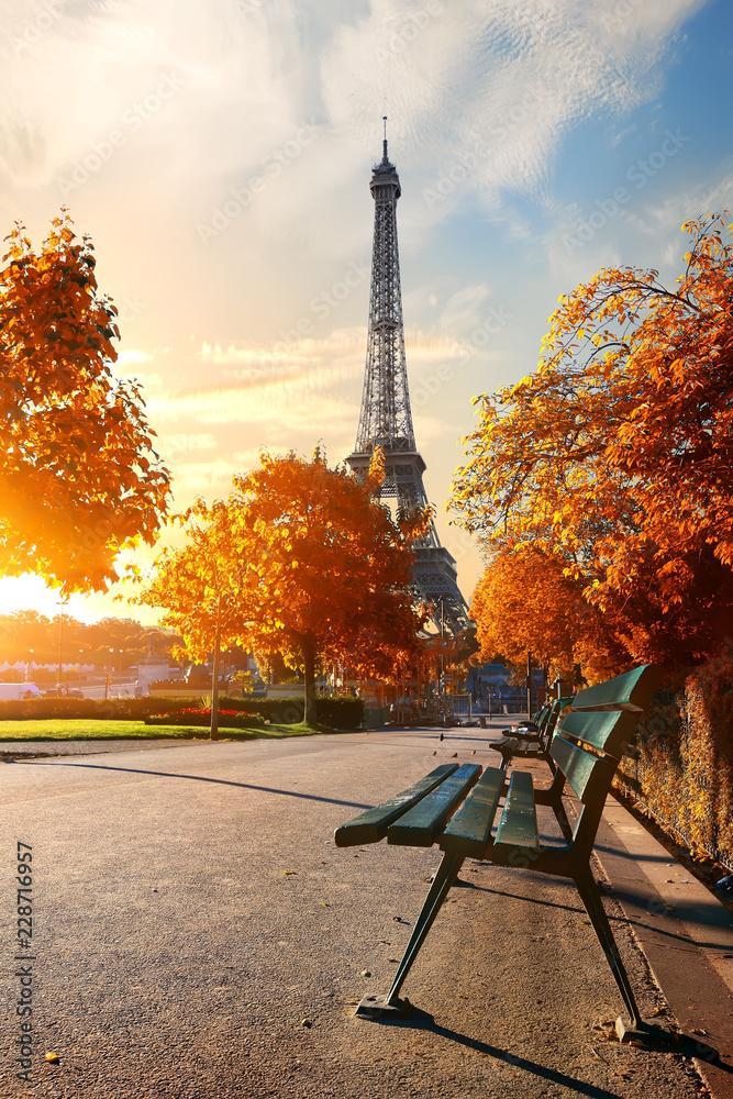 Fototapety, obrazy: Wieża Eiffla jesienią
