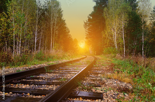 plakat old railroad passes through a picturesque autumn forest with yellow foliage at sunset lit by the rays of the sun