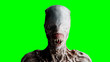 canvas print picture - Scary, horror monster. Fear concept. green screen, isolate. 3d rendering.