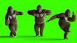 canvas print picture - Funny brown gorilla dancing. Super realistic fur and hair. Green screen. 3d rendering.