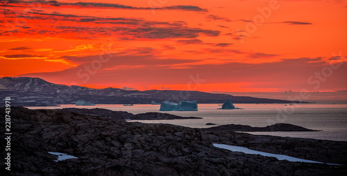 Foto auf Leinwand Koralle Arctic landscape in summer with icebergs at sunset in Scoresby Sound, East Greenland