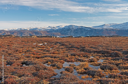 Spoed Foto op Canvas Arctica Tundra Wetlands in the High Arctic